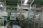 """""""Đột nhập"""" nhà máy sữa tươi lớn nhất Đông Nam Á tại Nghệ An"""