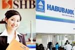 Nợ xấu ngân hàng nhìn từ sự biến mất của Habubank