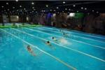 """""""Nóng"""" giải bơi giữa mùa đông tại Vinpearl Land Royal City"""