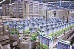 Câu chuyện TPP với thương hiệu sữa số 1 Việt Nam