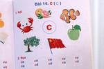 Sách Việt in cờ Trung Quốc: Sách liên kết - không sai mới lạ!
