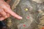 Phát hiện bản đồ chủ quyền Việt Nam trên đá tự nhiên có một không hai