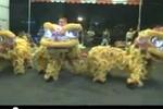 Dân mạng 'cười bò' clip múa lân kiểu Gangnam Style
