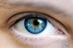 15 siêu phẩm giúp đôi mắt sáng và khỏe