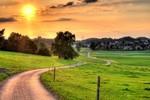 Tản mạn về cánh đồng, mặt trời và con đường
