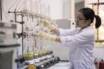 Đại học Quốc gia Hà Nội đứng thứ 502 toàn cầu về Vật Lý