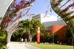 Đại Học Griffith - Top 5% Trường Đại Học Hàng Đầu Thế Giới