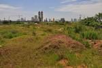 """""""Tòa tháp cao nhất Việt Nam"""" vẫn chỉ là bãi đất hoang cỏ mọc um tùm"""