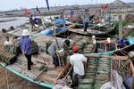 Tỉnh Nam Định khẩn trương đối phó với bão số 14
