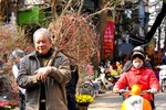 Giáp Tết, đi chợ hoa nổi tiếng nhất Hà Thành