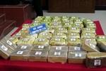 Bắt giữ 45 kg ma túy tổng hợp và 35 bánh heroin tại tỉnh Nam Định