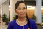 Đại biểu nêu ba điều kiện để giám sát kê khai tài sản cấp cao