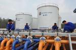 Quy hoạch hệ thống dự trữ dầu thô, sản phẩm xăng dầu