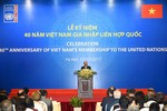 Việt Nam thúc đẩy các hoạt động hợp tác với Liên Hợp Quốc