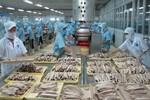 Thủ tướng chỉ đạo xử lý việc hàng thủy sản bị nước ngoài trả về