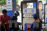 Đầu năm mới, giá xăng dầu đồng loạt giảm nhẹ