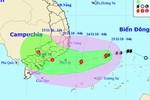 Thành phố Hồ Chí Minh yêu cầu trường học chủ động phòng chống bão số 9