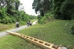 Hà Tĩnh: Dân hoang mang vì voi rừng tái xuất, phá hoại tài sản