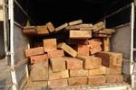 Quảng Bình: Bắt giữ gần 4 khối gỗ lậu