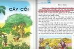 Sách giáo khoa Tiếng Việt lớp 2 có phải sai ngữ pháp, diễn đạt?