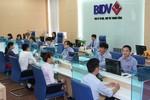 Hoạt động kinh doanh 9 tháng đầu năm của BIDV tăng trưởng khá