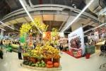 Vinmart hỗ trợ địa điểm bán hoa, cây cảnh Tết