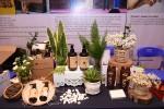 Sao Thái Dương tự hào góp mặt tại ngày hội khởi nghiệp đổi mới sáng tạo quốc gia