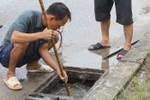 Ảnh: Dân Hà Nội đổ xô đi bắt cá mè dưới hố ga