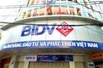 Có dấu hiệu sai phạm, BIDV Quảng Trị nguy cơ mất trắng tiền tỷ