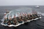 Trung Quốc nham hiểm, chỉ đạo tàu cá tấn công