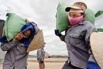 Hà Nội có nhiều hộ nghèo hơn Đà Nẵng, Bình Dương và Đồng Nai