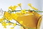 Khám phá những loại thực phẩm  dồi dào Omega-3