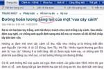 Một số lỗi tiếng Việt trên các báo điện tử hiện nay