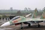 Báo Trung Quốc nói gì về việc Nga bàn giao Su-30MK2 cho Việt Nam?