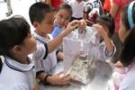 Giáo dục Thủ đô năm 2020 đến năm 2030 có gì mới?