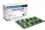 Cục Quản lý Dược yêu cầu truy tìm thuốc Lincomycin 500mg giả