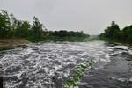 Xử lý triệt để các cơ sở gây ô nhiễm môi trường nghiêm trọng