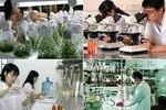 Phát triển nguồn tin khoa học và công nghệ