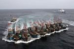 Việt Nam cần thành lập ngay lực lượng giám sát biển