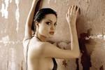 """Bộ ngực của Angelina Jolie và """"khối u"""" bô xít Tây Nguyên"""