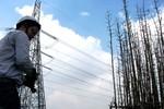 Vụ mất điện toàn miền Nam: Sẽ xử lý 3 đối tượng xâm hại!