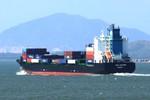 Tàu Singapore tông tàu cá VN: 1 người chết, 7 người mất tích
