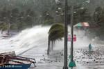 Công điện của Thủ tướng chỉ đạo đối phó với bão HaiYan