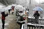 Hà Nội và các tỉnh Bắc Bộ rét đậm, miền núi đề phòng băng giá