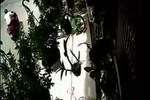 Video: Ăn mặc lịch sự, trộm xe honda PCX chỉ trong vài giây