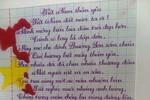 """Tranh cãi giải thưởng """"Em viết đẹp - viết đúng"""" của Phương Mỹ Chi"""