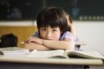 Sai lầm của giáo dục Việt Nam là quá coi trọng nhà trường
