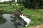 Rót gần 30 tỷ đồng, người dân Sầm Sơn vẫn khốn khổ vì ô nhiễm
