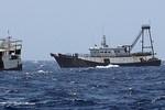 Các tàu trinh sát Trung Quốc giả dạng tàu cá vào sâu trong lãnh hải Việt Nam