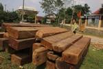 """Ông trùm buôn gỗ """"làm luật"""" cho trạm trưởng Trạm quản lý bảo vệ rừng"""